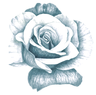 Rose Divider